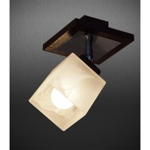 Deckenlampe Zeus DP-1PDW